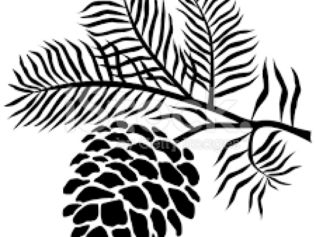 640x480 Free Pine Cone Clipart, Download Free Clip Art