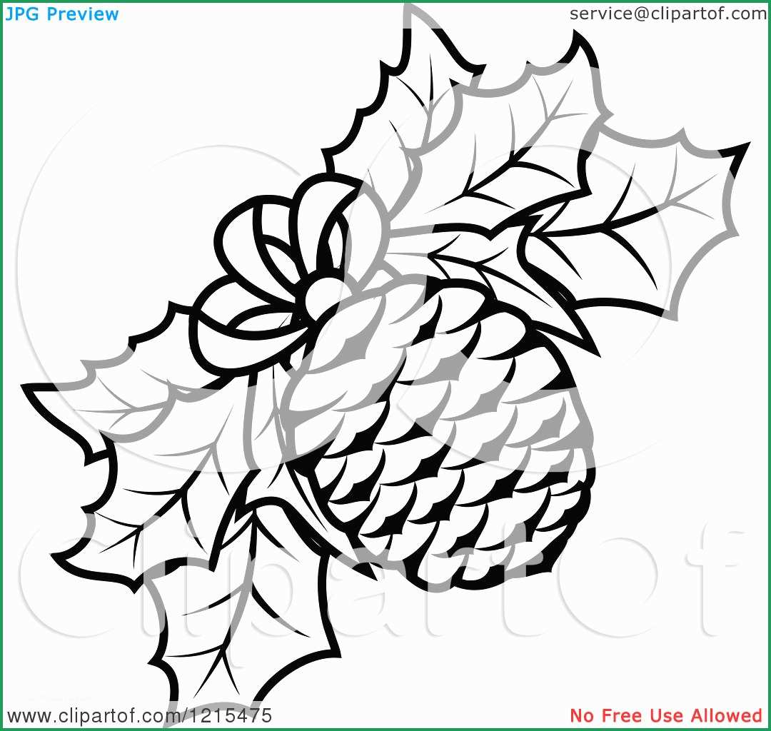 1080x1024 Lovely Photos Of Pine Cone Coloring