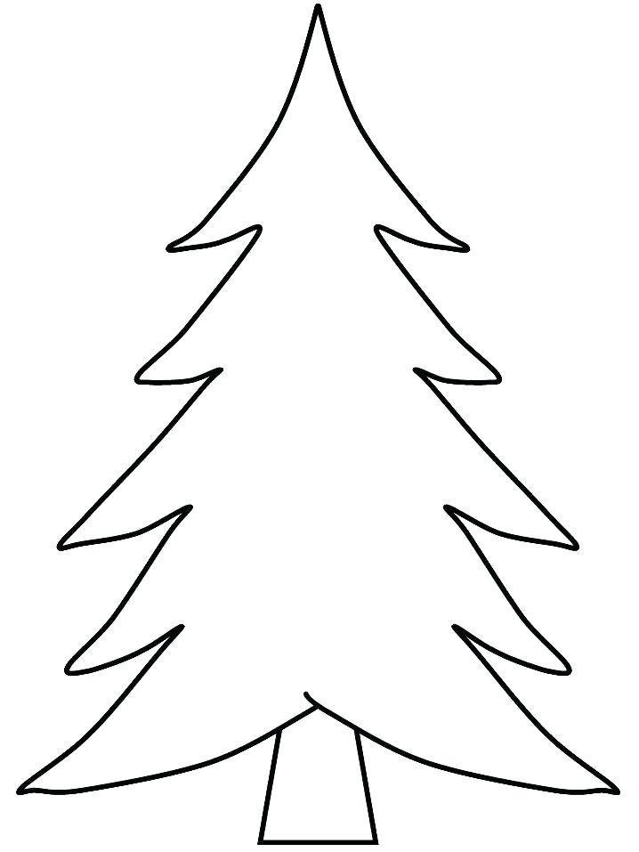 718x957 Pine Cone Colouring