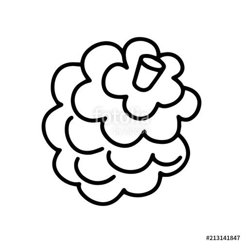 500x500 Pine Cone Cartoon Illustration Isolated On White Background