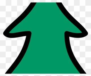 320x265 Single Leaf Pinyon Pine