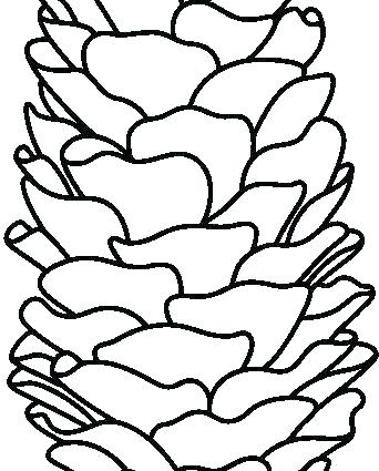 342x425 Pine Cone Coloring Pages Whitegarden Club