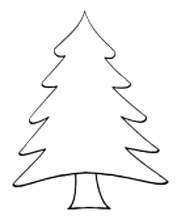 620x755 tree drawing for kid pine tree parts easy way of drawing tree tree
