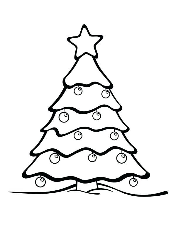 600x776 drawings of pine trees pine tree sketch look not pine tree drawing