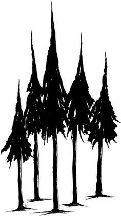 Pine Tree Pencil Drawing
