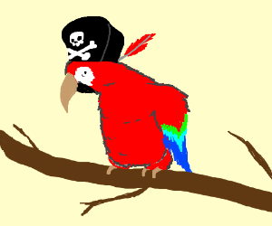 300x250 Huge Collection Of 'pirate Parrot Drawing' Download More Than