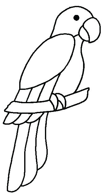 342x624 Parrot Colouring Pictures Parrot Coloring Pages Macaw Coloring