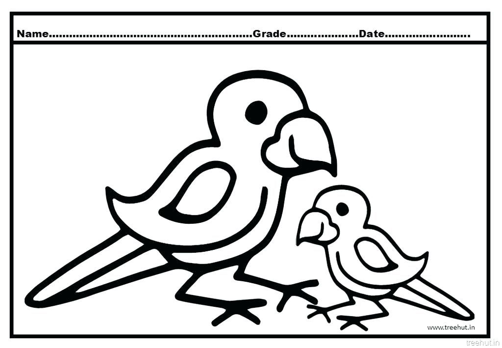 1024x709 Pirate Parrot Coloring Pages Pirate Parrot Coloring Pages Lovely