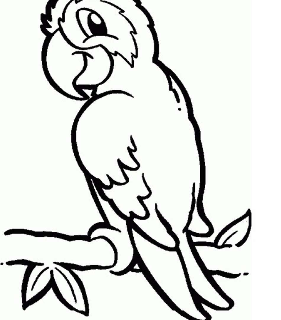 950x1080 Printable Parrot Pictures Free Ultimate Coloring Pages For Kids