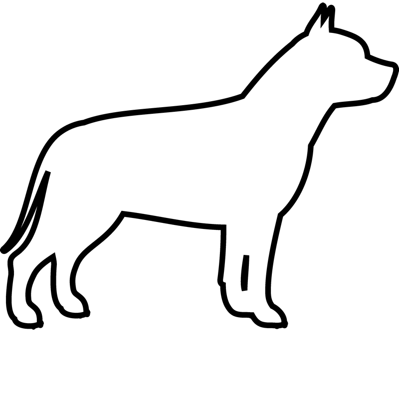 800x800 Mad Drawing Pitbull Transparent Png Clipart Free Download