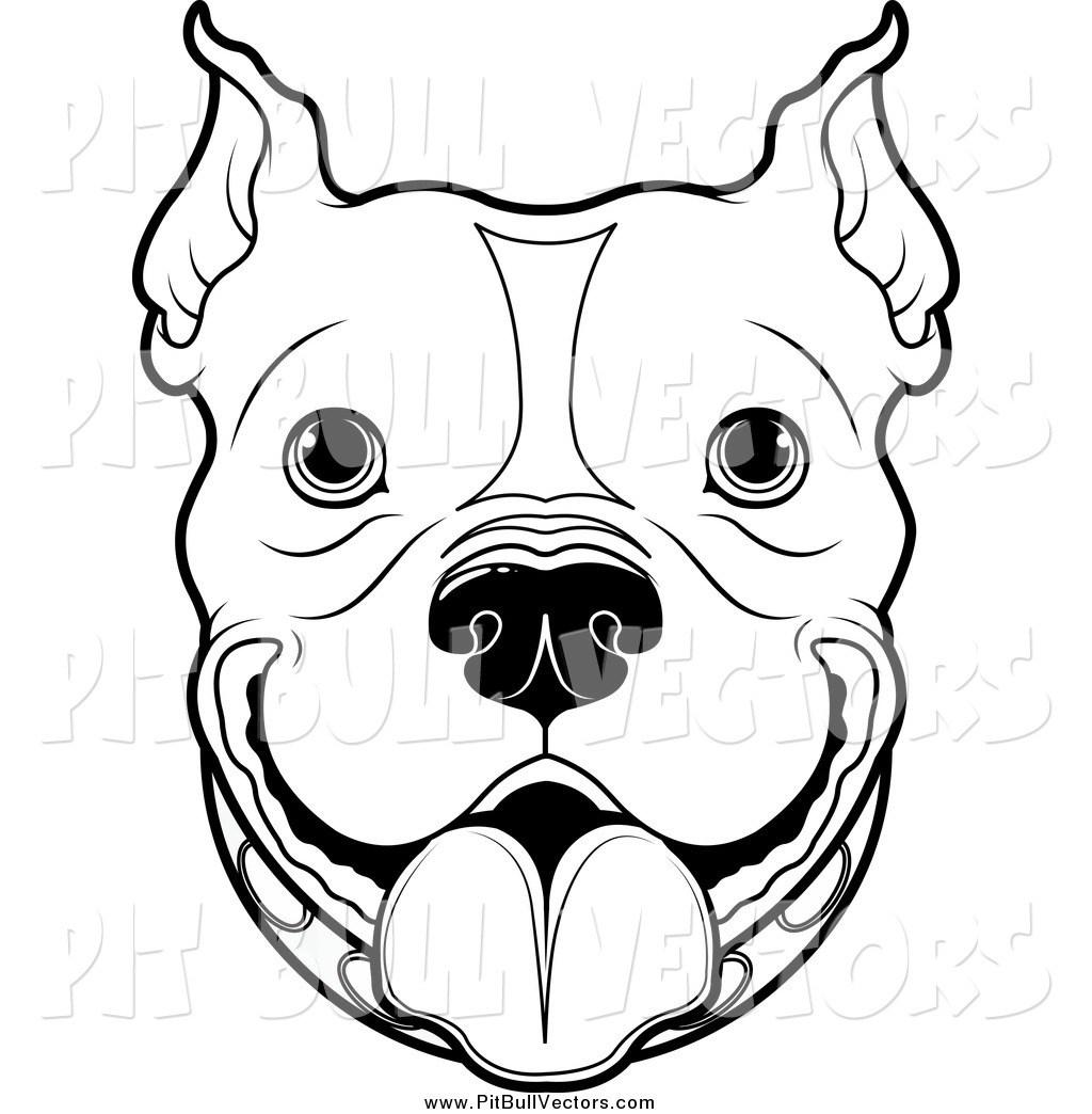 1024x1044 Pitbull Drawings Pencil Stencil