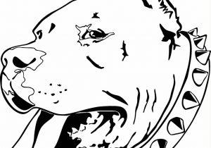 300x210 Pencil Drawings Of Pitbulls Black And White Pitbull Dog Face