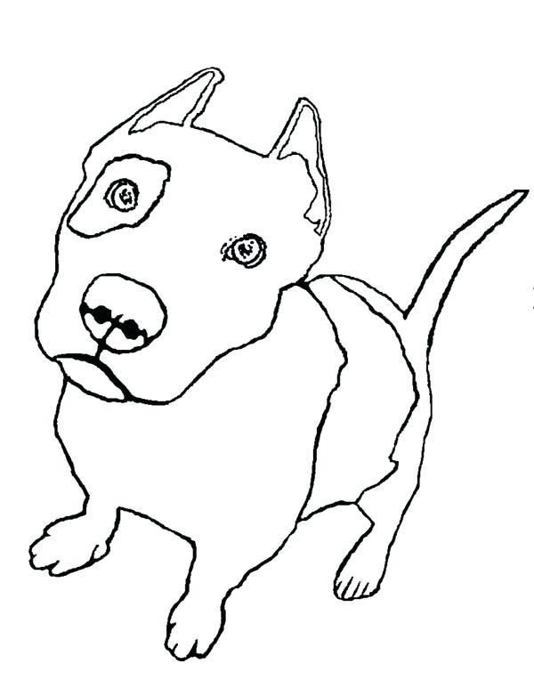 600x782 Pitbull Coloring
