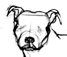 270x231 How To Draw