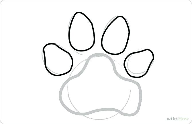 670x434 How To Draw A Puppy Face Step