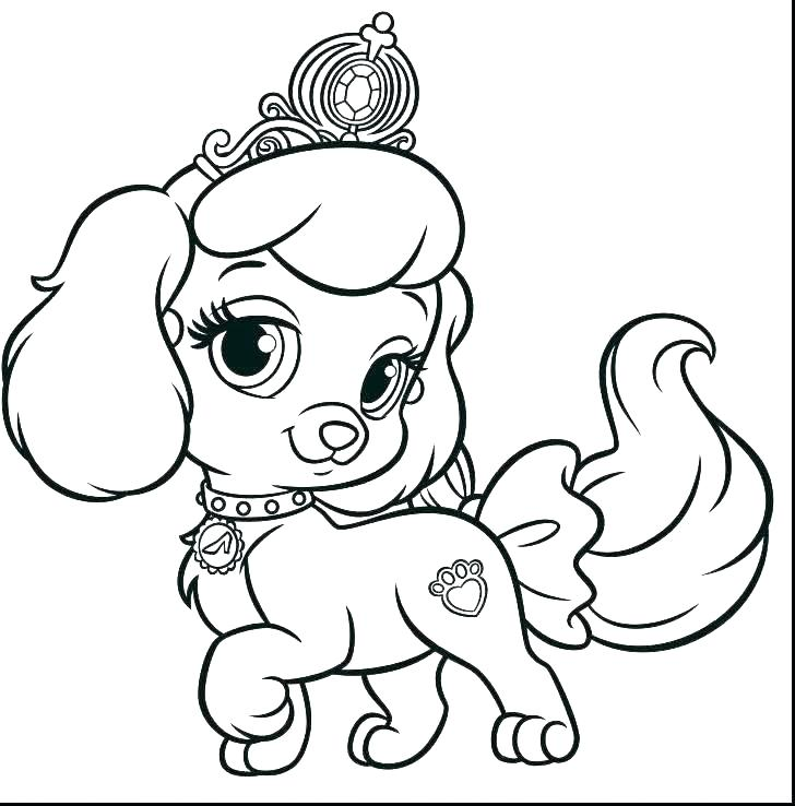 728x738 Red Nose Pitbull Coloring Pages