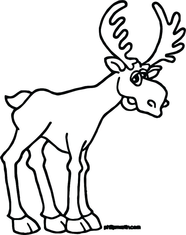 728x921 Bull Face Drawing French Bulldog Face Drawing Hoteles