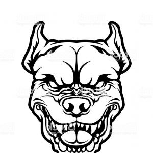 300x300 Photostock Vector Pit Bull Or American Bulldog Dog Face Outline