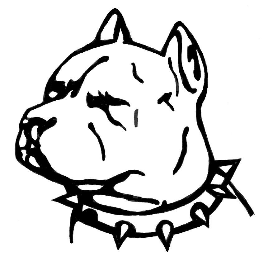 893x825 Pitbull Lineart Flash For Free Download
