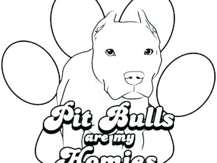 440x330 Pitbull Coloring Pages Line Drawing Pics Pitbull Dog Coloring