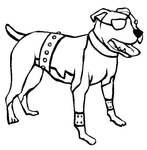 600x612 Pitbull Face Drawing Image Titled Draw A Step Pitbull Dog How