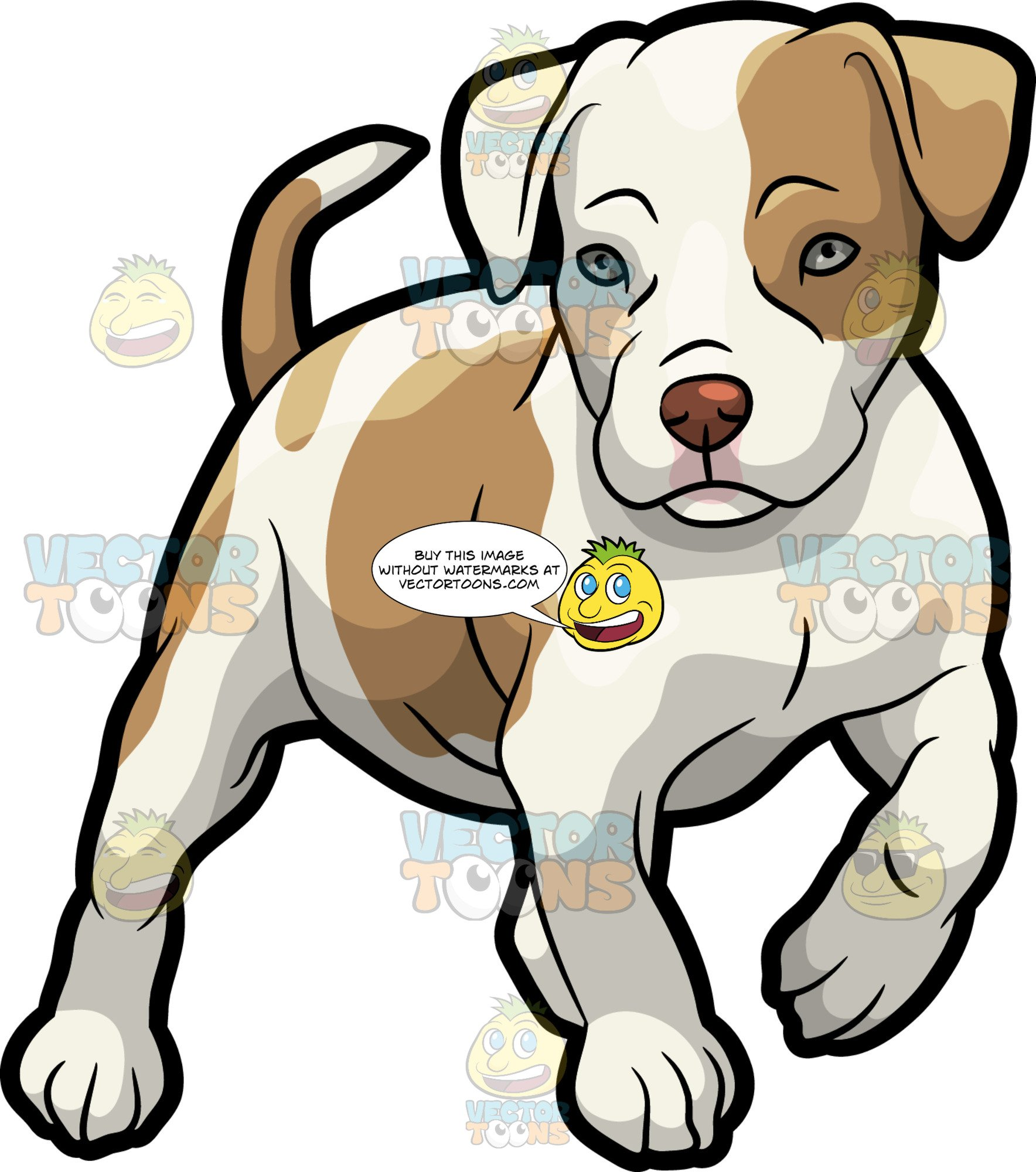 Pitbull Puppy Drawing