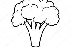 236x157 Broccoli Easy Girl Human Draw Pencil Tree Carmi Chaelinn
