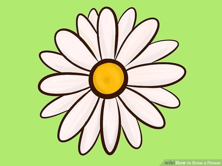 728x546 Easy Ways To Draw A Flower