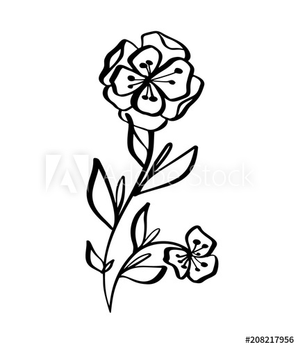 429x500 Hand Drawn Modern Flowers Drawing And Sketch Floral With Line Art