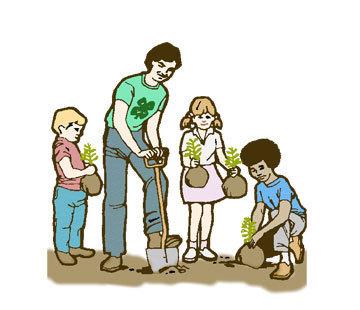 360x310 tree plantation services, tree plantation services