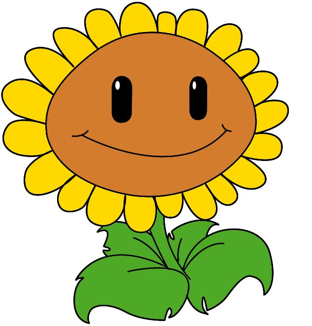 634x662 How To Draw The Sunflower From Plants Vs Zombies Draw Central