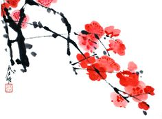 Plum Blossom Drawing