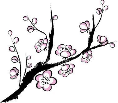 380x332 plum blossom wedding invitations cherry blossom drawing, plum