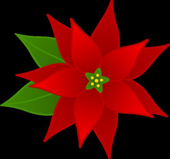 550x514 free clip art borders poinsettia christmas poinsettia flower