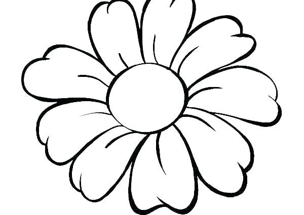 600x425 poinsettia coloring pages poinsettia coloring pages