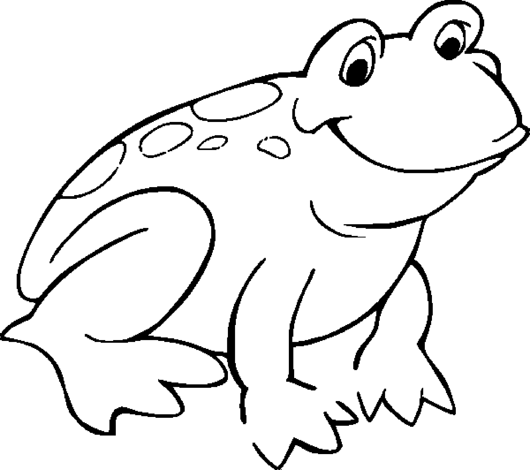 Poison Dart Frog Drawing