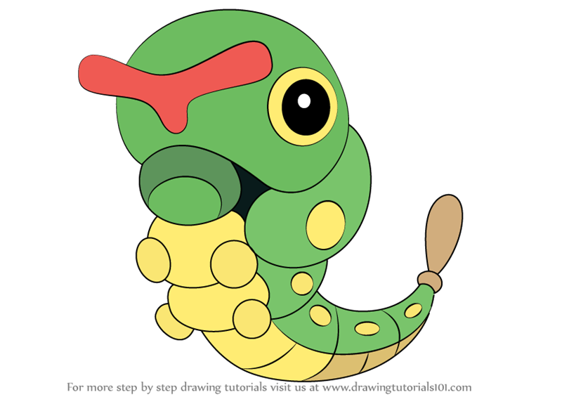 800x565 Learn How To Draw Caterpie From Pokemon