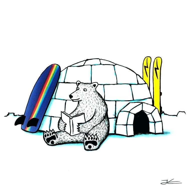 750x760 drawing polar bear polar bear polar bear sketch snl