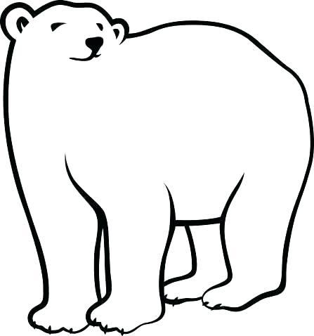447x478 drawing polar bear draw polar bear how to draw a polar bear step
