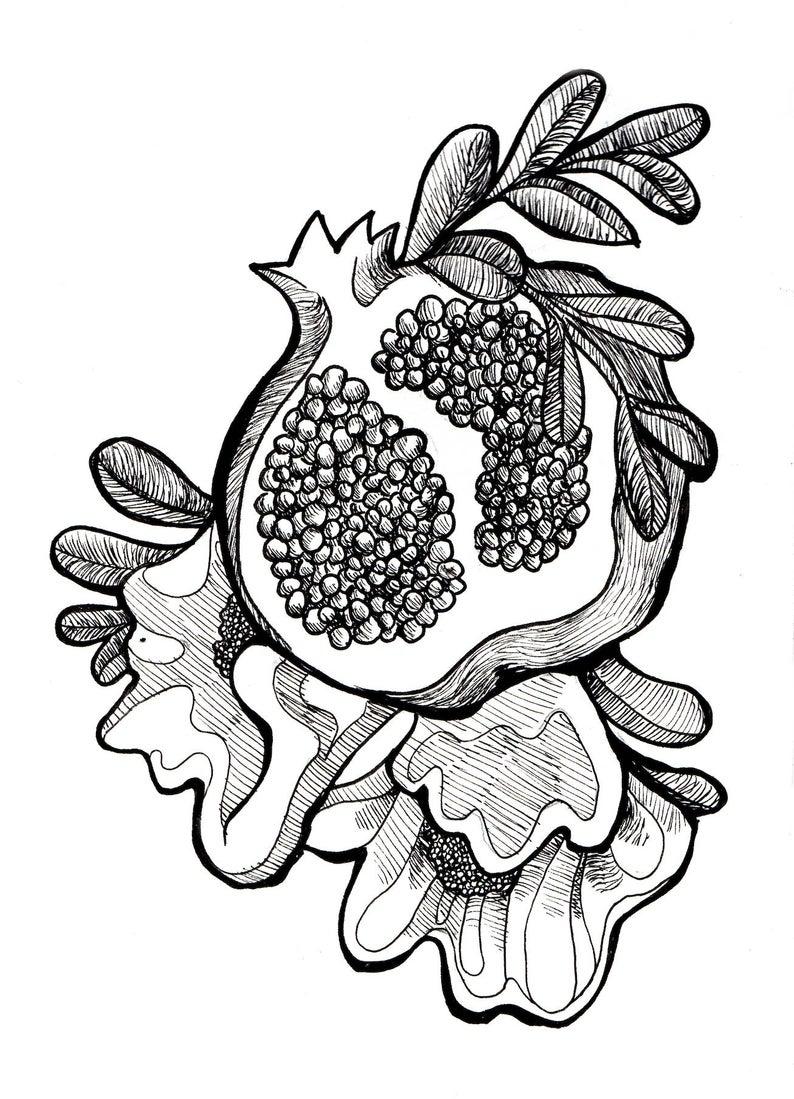 794x1099 pomegranate print elegant printpomegranate art elegant art etsy