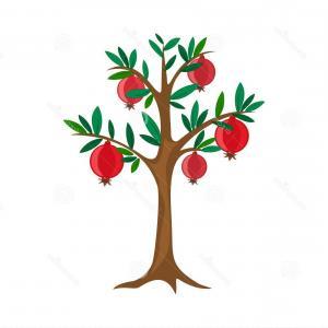 300x300 pomegranate tree vector tree fruit vector summer pomegranate tree