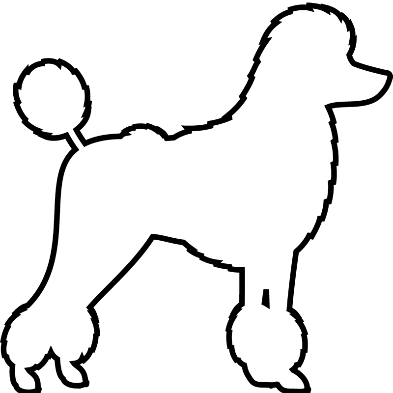Poodle Drawing Free On