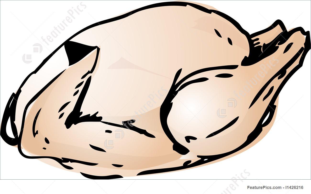 1300x810 Whole Raw Chicken Illustration