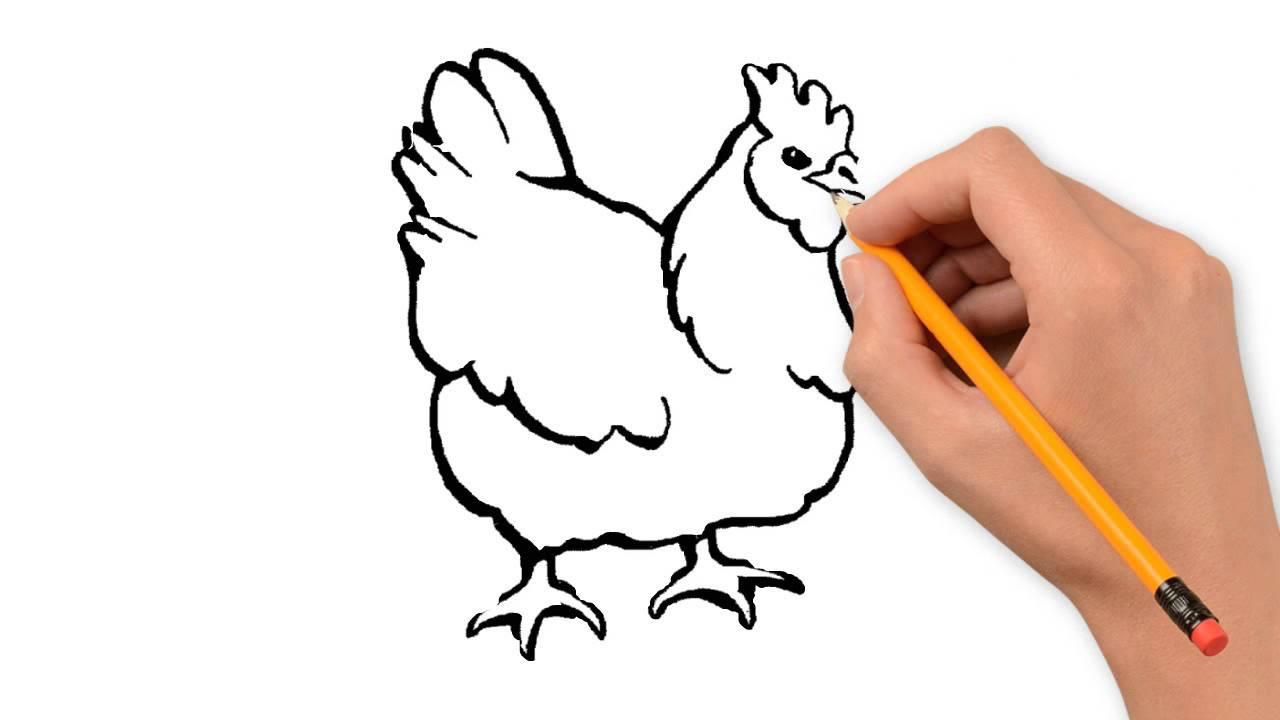 1280x720 Chicken Animals Pencil To Draw Step