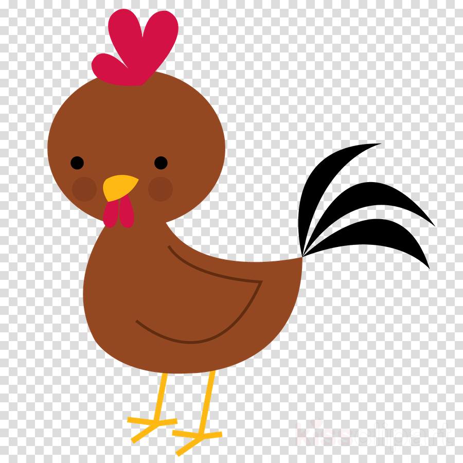 900x900 Chicken, Drawing, Duck, Transparent Png Image Clipart Free Download