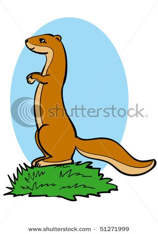 318x470 Prairie Dog Clipart Drawing Free Clip Art Stock Illustrations