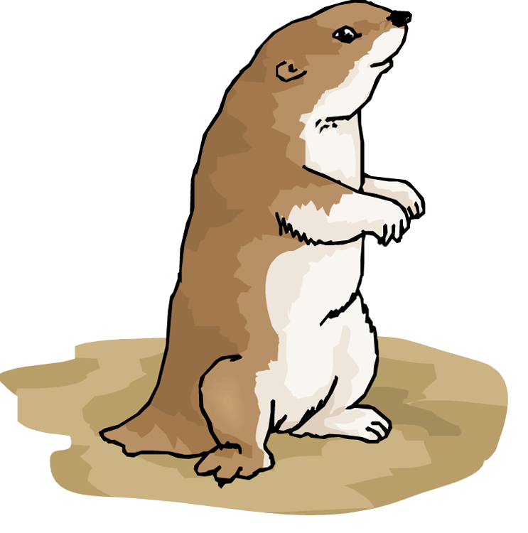 743x750 Collection Of Free Groundhog Drawing Gopher Download On Ui Ex