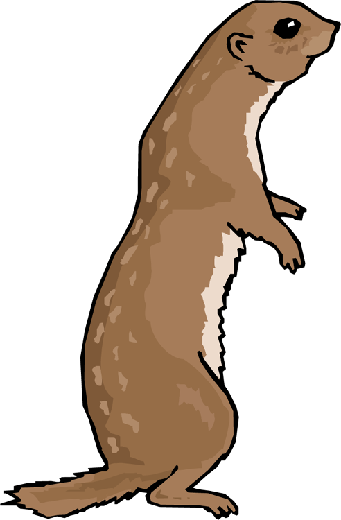 492x750 Collection Of Free Groundhog Drawing Prairie Dog Download On Ui Ex