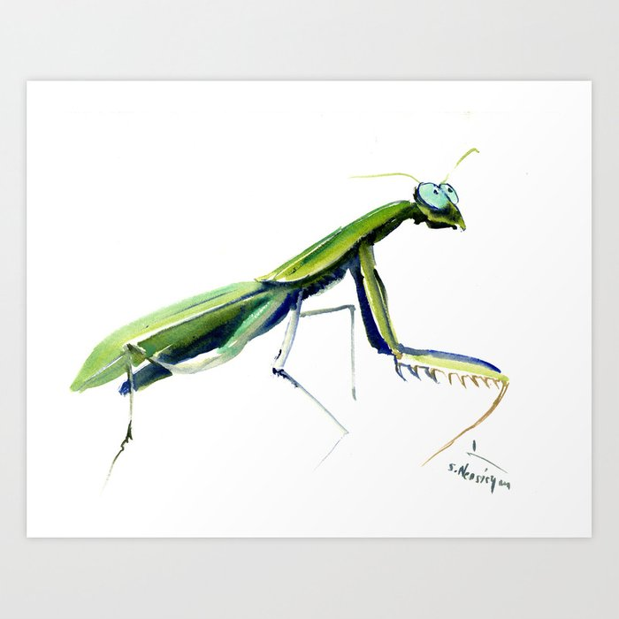 700x700 Praying Mantis Decor Art Print