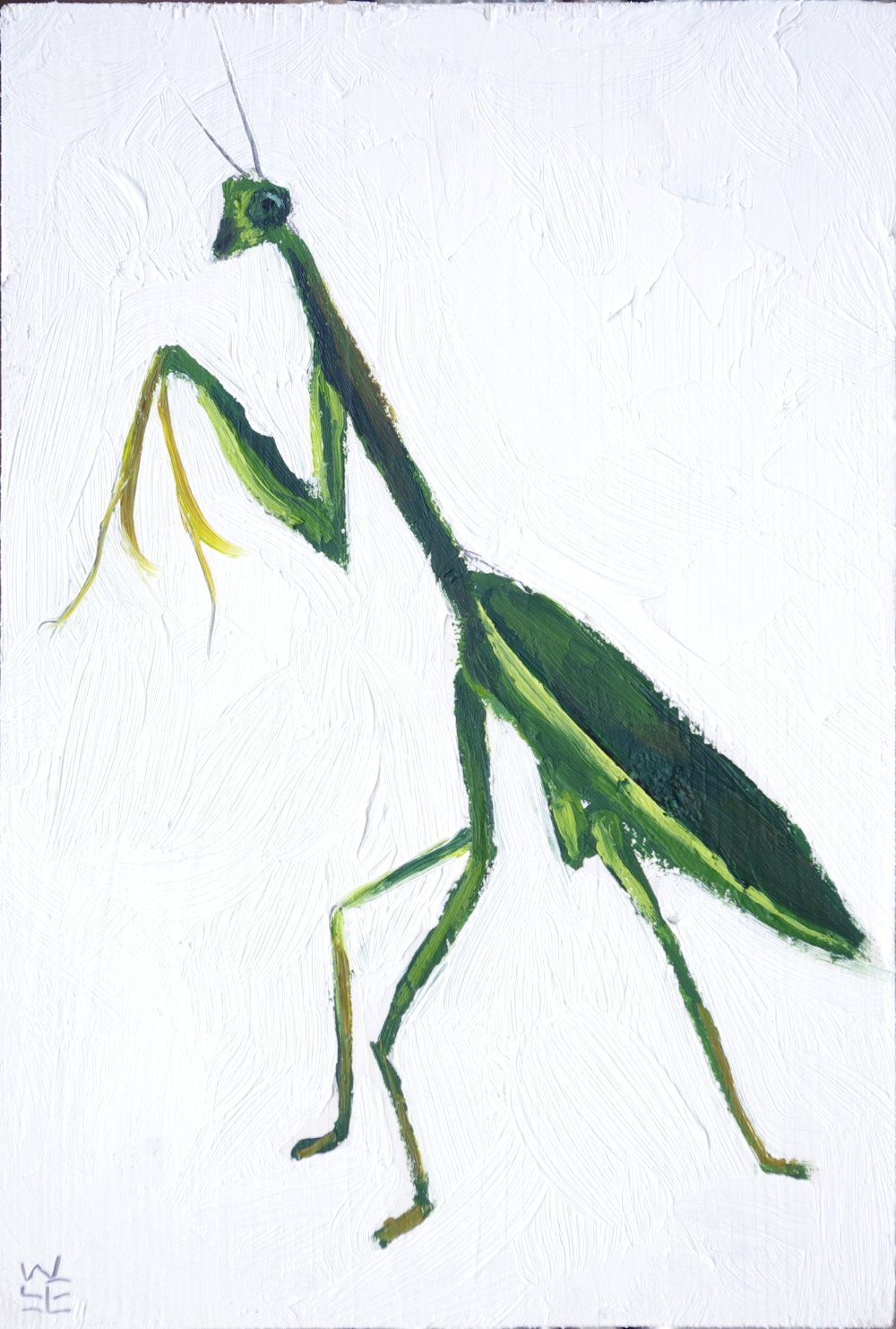 1000x1482 Praying Mantis Will Lineberger Eskridge